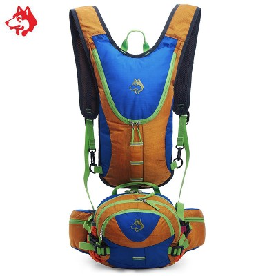 Famous Brand Outdoor Sports Travek Walking Hiking Backpacks Bag For Bicycle Climbing Camping Backpack Mountain Bags Rucksack
