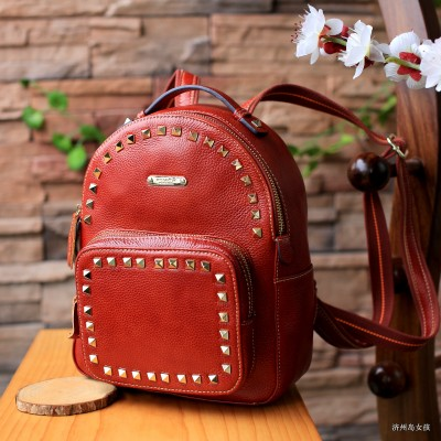 College of Retro Leather Fashion Backpack for Womens